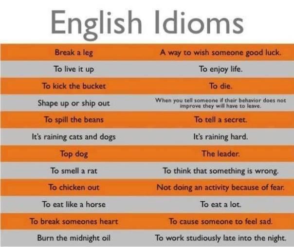 English Is Fun Some More Nice English Idioms Life Long Sharing